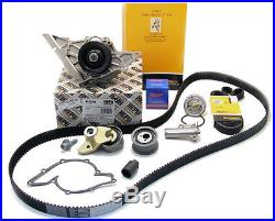 Audi A6 A8 Quattro 4.2L V8 Complete Timing Belt Water Pump Kit